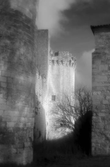 shadow hunting image
